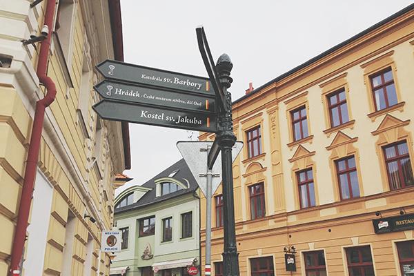 Nowak Tours - Locals Know Best
